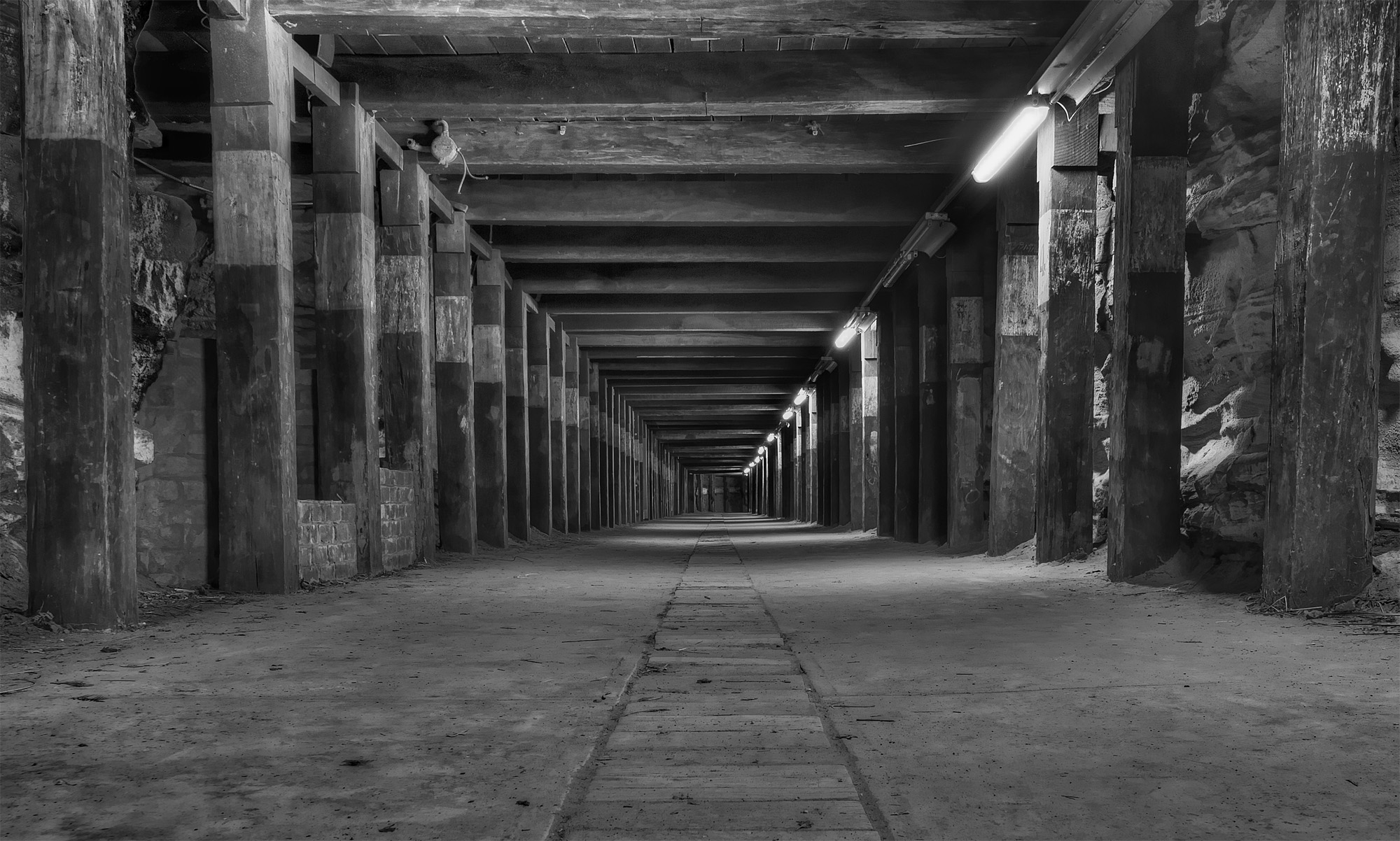 Dog Leg tunnel