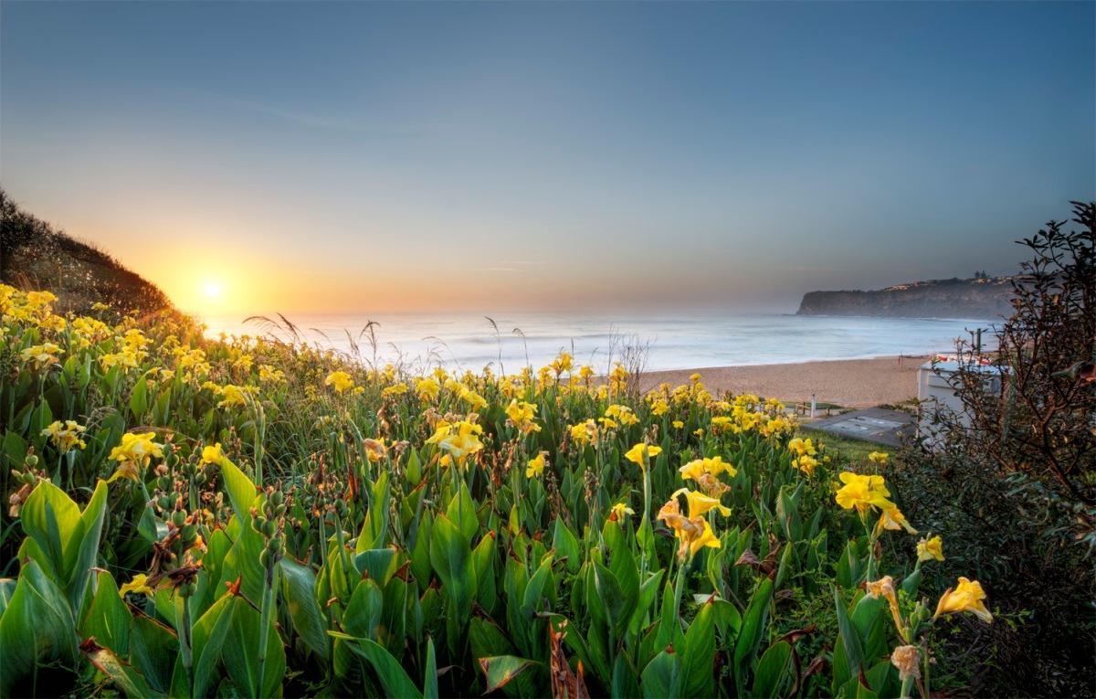Bungan Head Beach