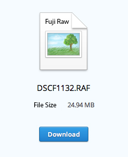Raw_Download